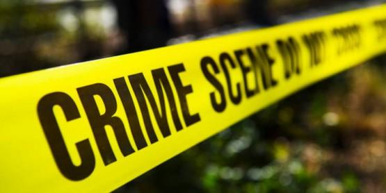 мухи разкриване на престъпления